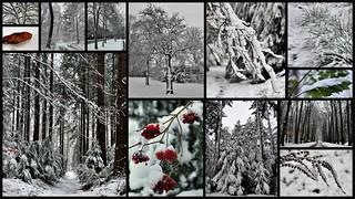 End of winter in December 2017