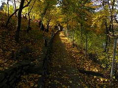 Autumn in the Romanian Village Museum in Bucharest (cod_gabriel) Tags: autumn toamna villagemuseum bucharest bucarest bucareste bukarest boekarest bucuresti bucureşti romania roumanie românia toamnă