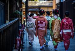 Geiko, Maiko, and Shikomi (rephian) Tags: geisha maiko japan japanese street walk shikomi geiko makeup