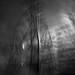 the spectral pylon