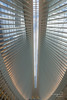Oculus Subway, another view (Cuong Du) Tags: subwayoculus worldtradecenter station newyork