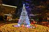 繽紛耶誕(DSC_4994) (nans0410(busy)) Tags: japan yokohama xmas merrychristmas tree outdoors nightexposure lighting よこはまし kanagawaprefecture tokyobay 日本 神奈川縣 東京灣 港未來 橫濱 耶誕樹 聖誕節