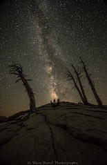 _8100394 (captured by bond) Tags: milkyway yosemitenationalpark california nightscape nighttime capturedbybond seetheworld getoffthecouch catchmeoutsidehowboutdat snagtree trees stars starscape