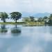 PhotAsia- Sri Lanka Udawalawa reservoir