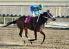 "2017-12-26 (35) r3 Christian Hiraldo on #1 My Sweet Autumn (JLeeFleenor) Tags: photos photography maryland md horse jockey جُوكِي ""赛马骑师"" jinete ""競馬騎手"" dżokej jocheu คนขี่ม้าแข่ง jóquei žokej kilparatsastaja rennreiter fantino ""경마 기수"" жокей jokey người horses thoroughbreds equine equestrian cheval cavalo cavallo cavall caballo pferd paard perd hevonen hest hestur cal kon konj beygir capall ceffyl cuddy yarraman faras alogo soos kuda uma pfeerd koin حصان кон 马 häst άλογο סוס घोड़ा 馬 koń лошадь laurelpark marylandraces races outdoors outside winter cold bay"