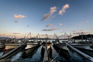 大海漁港 #1ーOomi fishing port #1