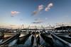 大海漁港 #1ーOomi fishing port #1 (kurumaebi) Tags: yamaguchi 秋穂 nikon d750 山口市 nature landscape 風景 自然 sea 海 sunset 夕焼け 漁港 船 boat fishingport