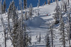 IMG_1764 (tbd513) Tags: newyears idaho snowboarding snowmobiling winter20172018