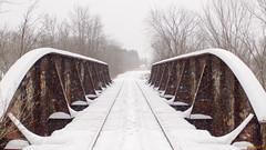 Pont sous la neige, Hiver, Gatineau, P. Q. Canada - 4213 (rivai56) Tags: gatineau québec canada ca laclemeryenhiver pq tracks chemin de fer en hiver sous la neige