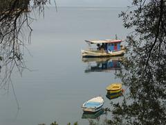Χρόνια πολλά Γιάννη!!  P1040033 (amalia_mar) Tags: χρόνιαπολλά λαμπίρι αχαϊα ελλάδα θάλασσα βαρκεσ δέντρα μπλε lambiri achaia greece sea boats trees blue happynewyear2018 sundaylights