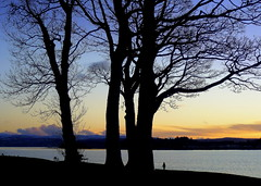 Feeling Good (Rollingstone1) Tags: silhouette trees sky sunset water sea riverclyde hills rhu scotland scenic vivid nature landscape colour art artwork park dusk tree grass forest