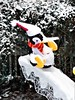 PENGUIN SLIDING ICICLE IN THE SNOW (Visual Images1 (Thanks for over 4 million views)) Tags: penguin icicle slide