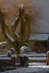 Andorra rural winter: La Massana, Vall nord, Andorra (lutzmeyer) Tags: aldosa andorra canoneos5dmarkiii europe iberia iberianpeninsula lamassanaparroquia lutzmeyer pirineos pirineus pyrenees pyrenäen vallnord arbre baum bild december desembre dezember diciembre dorf foto fotografie hivern iberischehalbinsel image imagen imatge invierno laldosa lutzlutzmeyercom neu nieve parroquia photo photography picture poble postadelsol pueblo puestadelsol rural schnee snow sonnenaufgang sonnenuntergang sortidadelsol sunrise sunset tal tree valley village winter lamassanavallnord