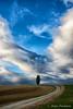 Alone (Luca-Anconetani) Tags: tree hills travel lucaanconetani colline collinemarchigiane paesaggimarchigiani landscapes panorama albero strada sentiero stradadicampagna country italy nature sky clouds rural paesaggiorurale fields