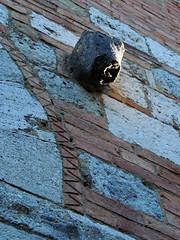 Montingegnoli - 3 (antonella galardi) Tags: toscana siena radicondoli belforte montingegnoli 2017 borgo paese fantasma ghosttown