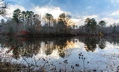 Evening Light on Swift Creek Reservoir 5 - Midlothian, VA (Paul Diming) Tags: dailyphoto v1 landscape virginia n1v1 chesterfieldcounty nikon1v1 midlothianvirginia swiftcreekreservoir lake midlothian pauldiming winter unitedstates us