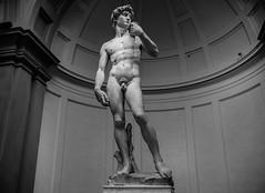 Michelangelo's David in Galleria dell'Accademia (Sajivrochergurung) Tags: florence sculpture david art italy statue
