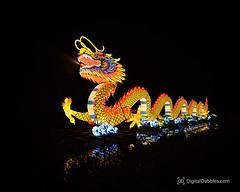 DSC_1464-Edit (DigitalDabbles) Tags: chinese lantern koka booth cary nc festival