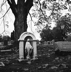 untitled (kaumpphoto) Tags: rolleiflex ilford 120 tlr hp5 cemetery grave mary religious tree stone gravestone memorial graveyard angel leaves marker headstone virgin saintpaul
