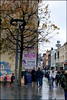 Blokes beneath branches (* RICHARD M (6.5+ MILLION VIEWS)) Tags: street candid boldstreet liverpoolropewalks pedestrians tree barebranches december wet wetweather wetpavements reflections shops liverpudlians scousers scouse autumnleaves rain graffiti liverpool merseyside europeancapitalofculture capitalofculture unescomaritimemercantilecity maritimemercantilecity england unitedkingdom uk greatbritain britain britishisles winter wintertime ropewalkssquareliverpool boldstreetliverpool