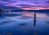 Estuary Sunrise | December 2017 (pklopper) Tags: estuary river colors colourful long exposure sunrise vancouverisland nikon petrusklopper