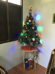 Christmas tree on Christmas morning (SierraSunrise) Tags: artifical christmastree lights lit nongkhai phonphisai thailand trees