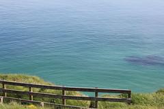 IMG_3726 (avsfan1321) Tags: ireland northernireland unitedkingdom uk countyantrim ballycastle carrickarede carrickarederopebridge nationaltrust landscape green blue ocean atlanticocean