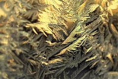 winter (joy.jordan) Tags: window ice frost crystals texture pattern light bokeh winter nature sunrise