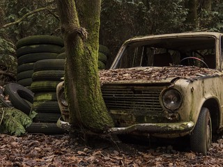 Urbex Lost in the woods (revisit)