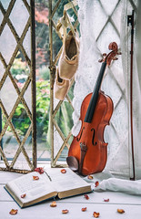 52/52: Dance to the music... (judi may) Tags: 52weekchallenge music violin balletshoes pointeshoes book petals rosepetals windows reclaimedwindows wood lace lacecurtain openwindow garden driedrose rose canon7d bow brokenglass
