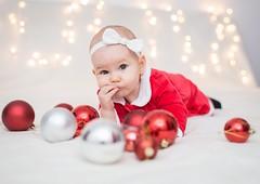 Christmas , Family photo shoot (Búzás Botond Photography) Tags: christmas portrait newyear 2017 2018 family studio cute tree chrismastree nikon d610 85mm 50mmf18 godox