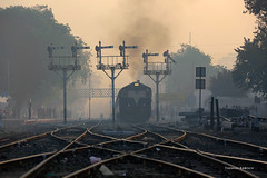 IN - 2017-11-26- Dhuri (Thomas Kabisch) Tags: india indianrailways dhuri alco wdp1
