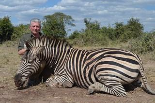 Zimbabwe Cape Buffalo Hunt 74