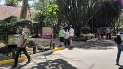 2017-12-28 14.10.38 (dcwpugh) Tags: travel nairobi kenya safari nairobinationalpark