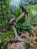 Climbing Trees (Steve Taylor (Photography)) Tags: climbing treekagaroo marsupial trunk art sculpture brown green metal asia singapore gardensbythebay flowerdome