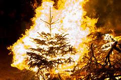 Christbaum (Jan Wasmund) Tags: baum holz feuer warm kalt heis brennt brennen burn burning fire weihnachtsbaum christbaum christmastree weihnachstbaumverbrennung altefähr winter dunkel drausen dark outside pentax k50