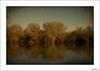 Un reflejo de lo que fue (V- strom) Tags: otoño autumn flora vegetación vegetation naturaleza agua water árbol tree texturas sonym5 nikon nikon2470 nikond700 viñeta vintage recuerdo memory amarillo yelow blue azul paisajes landscape
