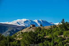 (HimzoIsić) Tags: landscape mountain hill conifer snow winter sky blue house nature mountainside forest tree ngc