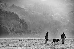 _DSC98552 (adrizufe) Tags: sukarrieta sanantonio urdaibai dog people walkingthedog nature ilovenature ngc nikonstunninggallery nikon d7000 leaartibai aplusphoto adrizufe adrianzubia bn bw blackwhite basquecountry bizkaia