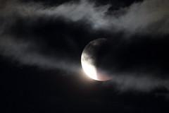 Super Blue Blood moon in the clouds (jlcummins - Washington State) Tags: moon superbluebloodmoon sky tamronsp150600mmf563divcusd canon celestial eclipse lunareclipse yakima