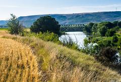 El Duero (cvielba) Tags: duero puente valladolid peñafiel rio tren