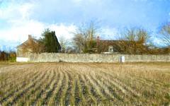 Le mur. (*Jost49* (Off)) Tags: france paysdelaloire campagne country demeure house mur wall champ field texture panasonic lumixfz1000