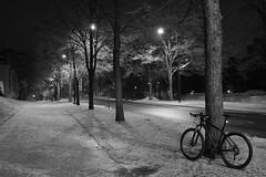 2018 Bike 180: Day 11, January 11 (olmofin) Tags: 2018bike180 finland vantaa myyrmäki frost frozen huurre bicycle polkupyörä lumix 20mm f17