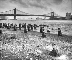 Manhattan Bridge in the snow (beninfreo) Tags: winter snow flurry coating oreshore brooklynbridge newyork manhattanbridge cloudtogroundimages manhattan derilict jetty blackandwhite bw monochrome mono canon canon5d3 1740mml 2017