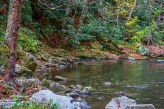 Peaceful Mountain Stream (tclaud2002) Tags: stream mountaion mountainstream landscape nature mothernature trees rocks fall autumn colors fallcolors brook northcarolina andrews usa