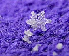 Snowflake in the Great Blizzard of 2018 (BKHagar *Kim*) Tags: bkhagar snow snowflake macro cold snowing icy athens al alabama limestonecounty january 2018