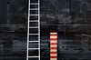 (the unbearable brightness of seeing) Tags: ladder