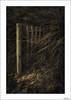 ¿Fronteras?(Explore) (V- strom) Tags: concepto concept madera wood portugal sanmartinhodoporto arena sand fronteras borders hierba grass luz light nikon nikon2470 nikond700 texturas textures detalles details