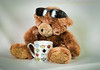 Why Can't I (HTBT) (13skies) Tags: happyteddybeartuesday tea drinking hot comfort soothing relax teddybear sunglasses lookingcool questions answers why bear fuzzy warm teddybeartuesday brown fun h