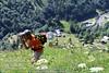 ArchForumBelluno-Visita-Studio-Aosta-051 (ArchForumBelluno) Tags: rifugioalpenzu alpenzugrande gressoney walser valdaosta vda archforumbelluno viaggiostudio architettura etnografia storia alpi residenceoberteil monterosa passeggiatatraivillaggiwalser architetturaepaesaggiodaltaquota alpenzupiccolo hobalté rong eckò lysbalma